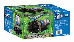 Pompe De Transfert D'eau À Diaphragme Everflo 12 Volts, 5,5 Gpm Pour Camping-cars Et Remorques